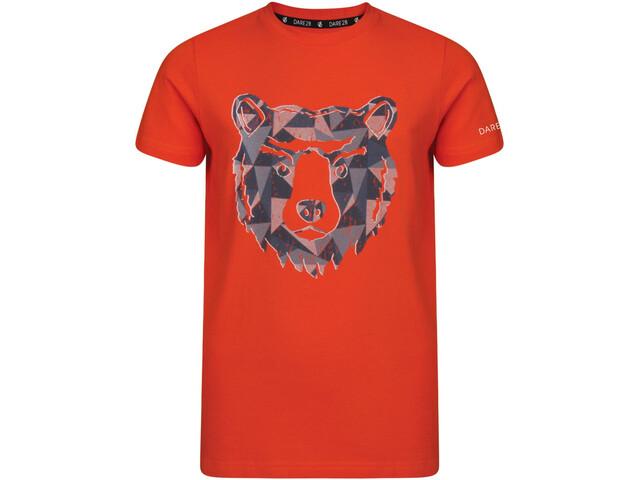 Dare 2b Frenzy T-shirt Garçon, cajun orange